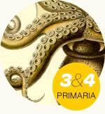 Unidade didáctica para 3º e 4º Primaria